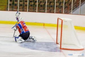 hokej-he-lm11.jpg